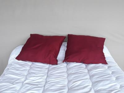 Lot de 2 oreillers 1er prix - 3931 - Bordeaux