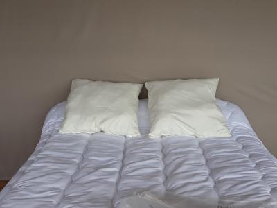 Lot de 2 oreillers 1er prix - 3931 - Ivoire