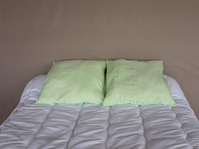 Lot de 2 oreillers 1er prix - 3931 - Vert pâle