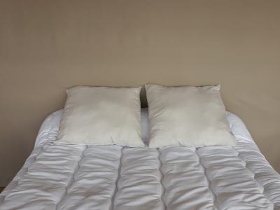 Lot de 2 oreillers 1er prix - 3931 - Gris Clair