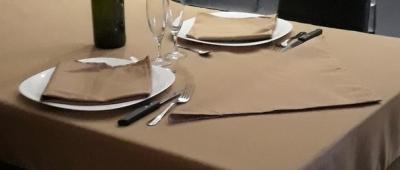 Lot de 3 Serviettes de table 45x45 Taupe - 7631